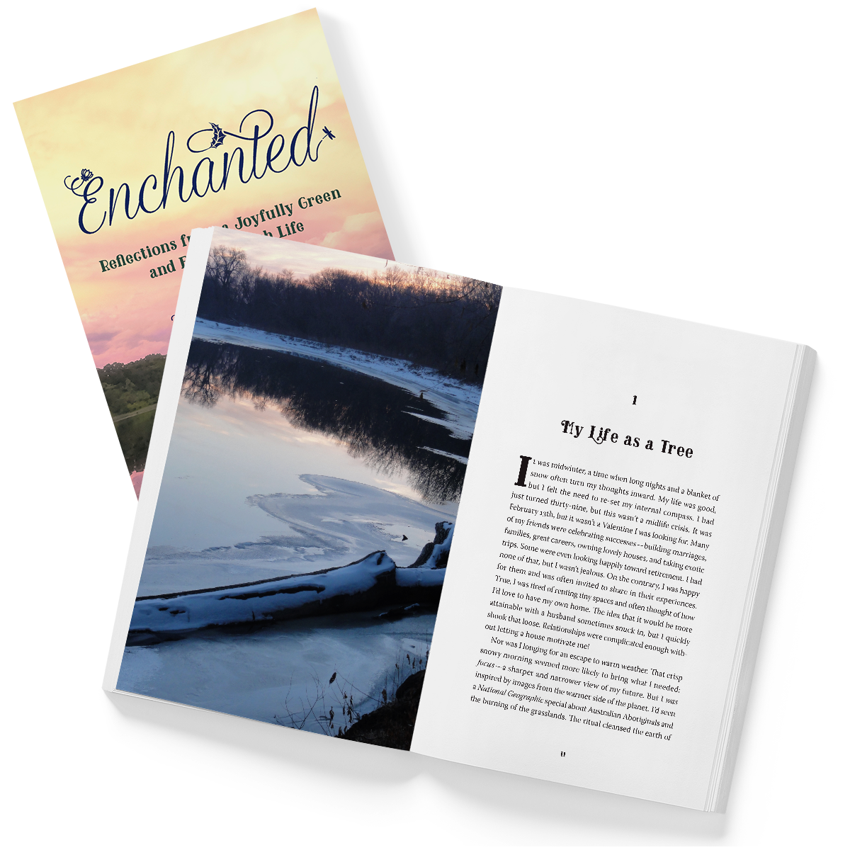 Enchanted Cover and Interior