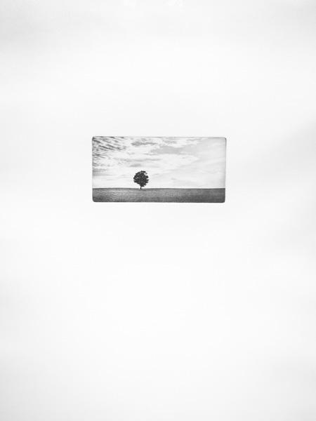 Isolation, print