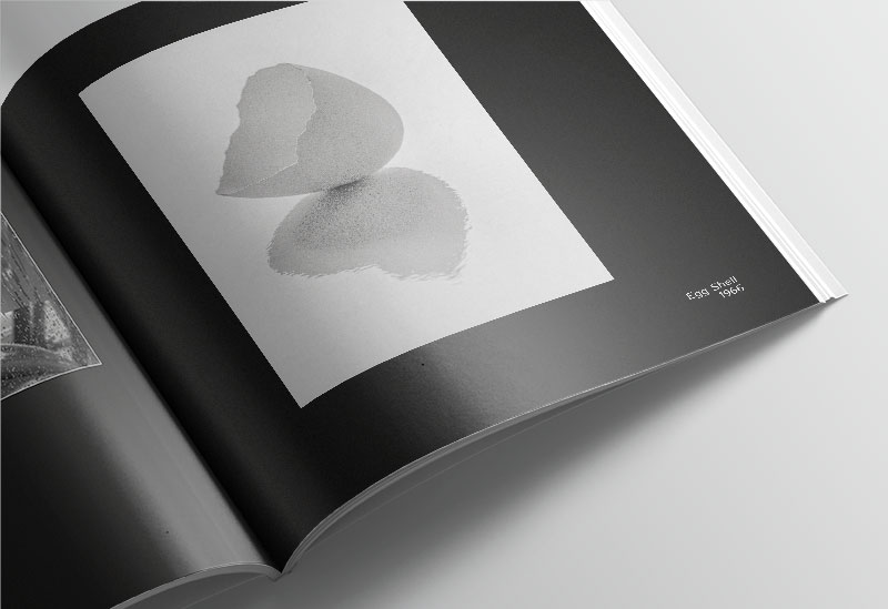 """David Wong's Photobook Collection """"Beauty in Plain Sight"""""""