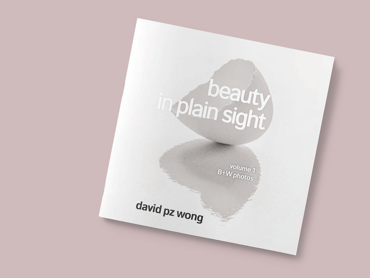 Alternate cover concept for Beauty in Plain Sight featuring a broken egg shell